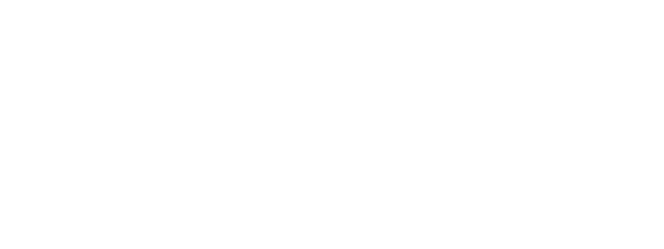 allzin - Who? What's Up? Where?