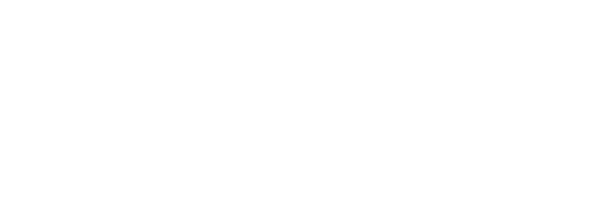 internet site - allzin